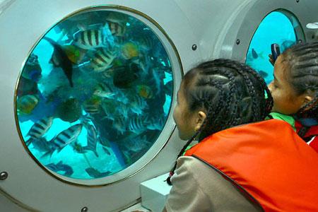 Odyssey Submarine Bali Water Sport Wisata Kapal Selam 2018
